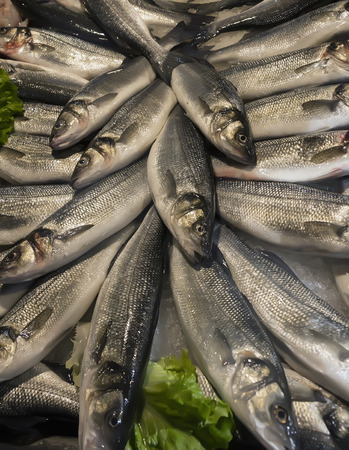 Closeup of fresh wild fish (sea bass) for sale at the market Imagens
