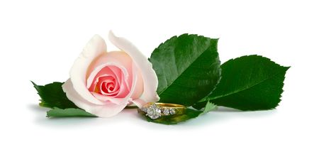 Diamond Engagement Ring & Pink Rose On White Stock Photo - 3459701