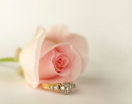 pink rose bud paired with diamond engagement ring surrounded in soft blur
