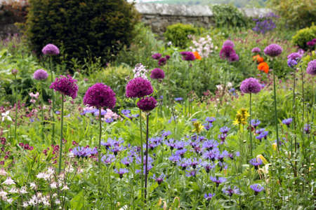 Cottage Garden photo