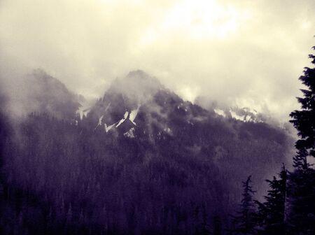 Mountain range from mt rainier national park Stock Photo