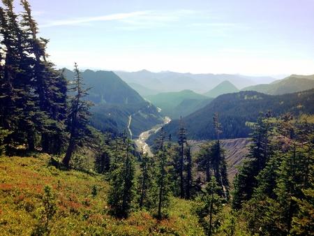 Scene above the nisqually river at Mt. Rainier Washington