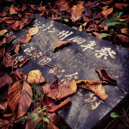 A stone slab with JapaneseEnglish writing adorned with fall leaves