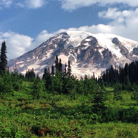 mt rainier: Mt. Rainier Washington