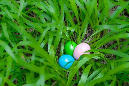 narrow depth of field: Easter eggs hidden in grass shrub. Homemade, hand painted. Narrow depth of field. Selected focus.