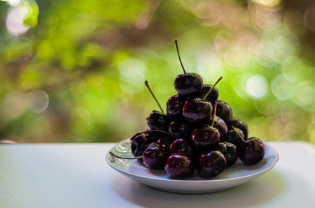 closeup pile of dark cherry on white plat on white table with green bokeh background. cherries are nutritious source for helping you get your daily amount of fruit. high in fiber, vital vitamin c.
