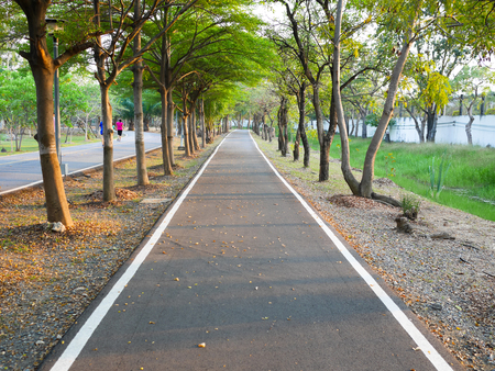 Bike lane separated from jogging track in the park