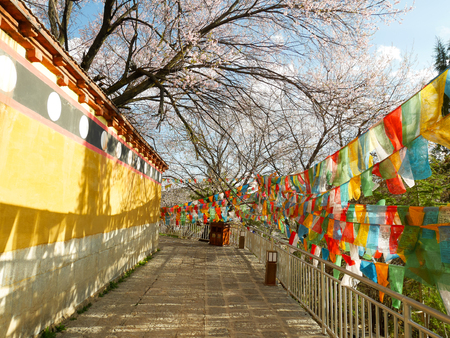 Colorful prayer flags in Dafo temple in the old town of Shangri-La, Yunnan, China Reklamní fotografie