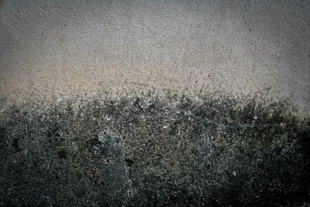 textured wall: Grey grunge textured wall