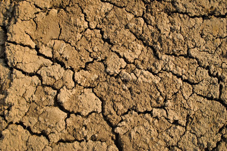 foundation cracks: Dry soil, Cracked Ground texture Stock Photo