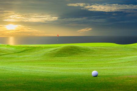 녹색에 골프 공입니다.