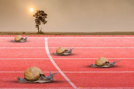 Snail effort running on red rubber track