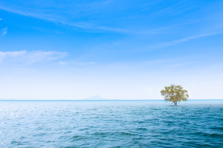 Beautiful sea on sunny day with blue sky.