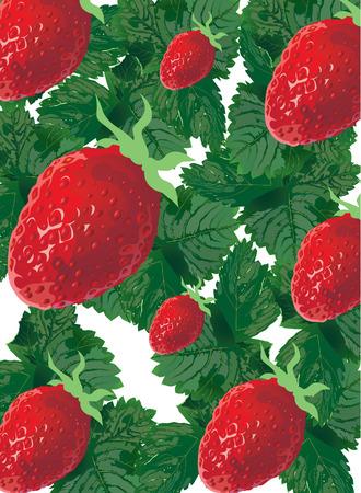 seasoned: strawberry Illustration