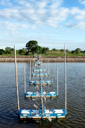 water turbine: fish farm with water turbine