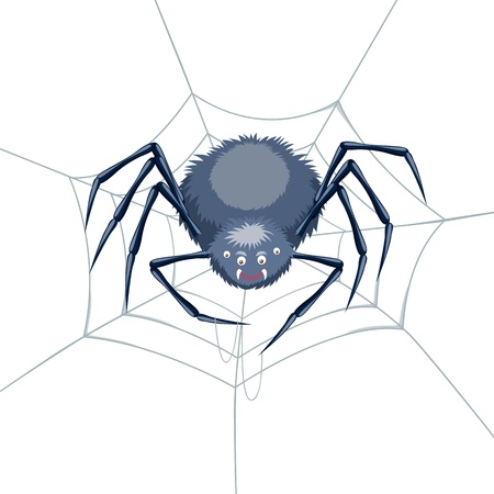 Spider in a Web Stock Vector - 14496879