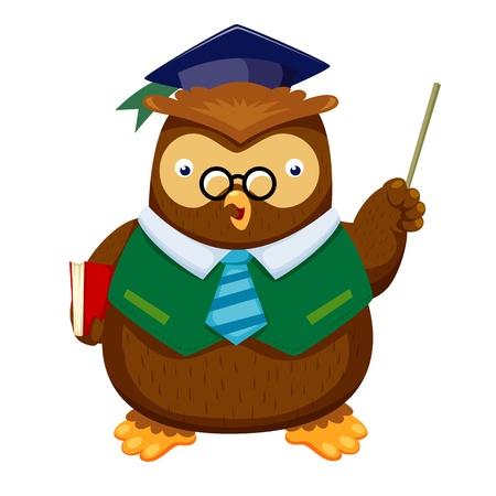 knowledgeable: Owl  Illustration