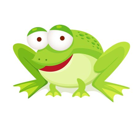 green tree frog: green frog isolated on white