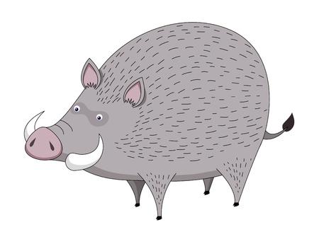 boar: Boar vector Illustration