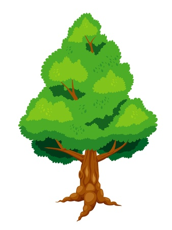 lonely tree: Large tree vector