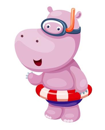 snorkel: Nijlpaard