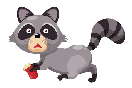 Raccoon Stock Vector - 14812656