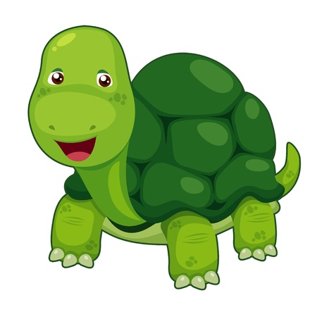 turtle isolated: Cute turtle vector