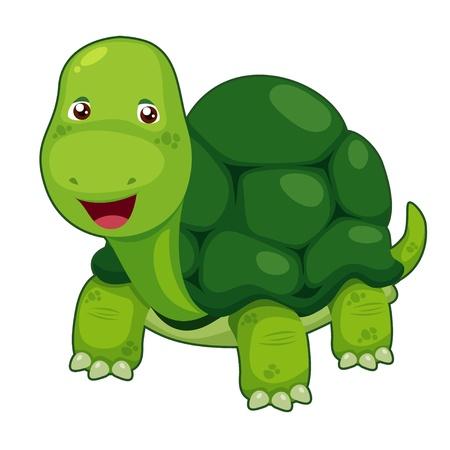 tortuga caricatura: Tortuga linda vector