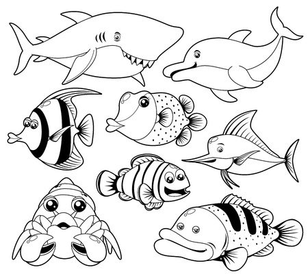 saltwater fish: illustration of fish sea black and white set