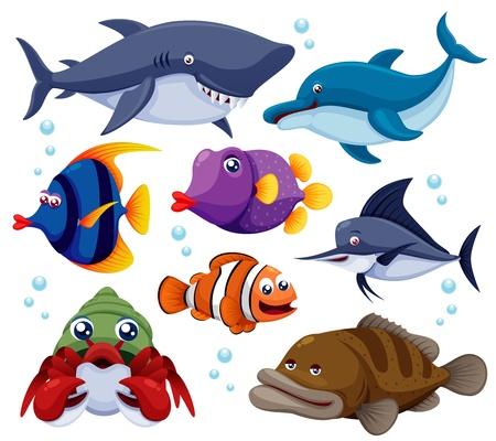 peces caricatura: ilustración de peces de aguas