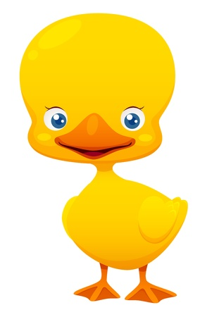 Little duck Vector