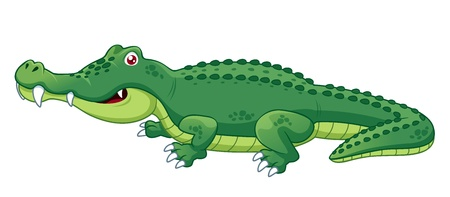 alligator: illustration of crocodile