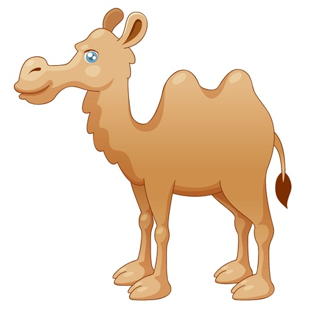 illustration of camel  Vector Vector