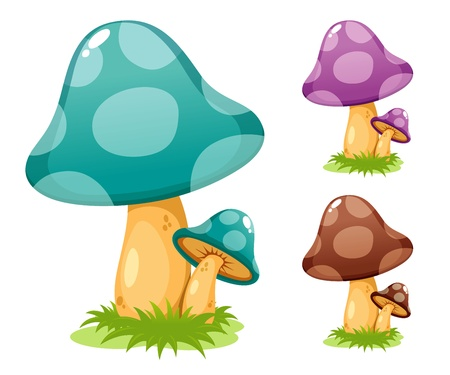 edible mushroom: Mushrooms vector illustrations Illustration