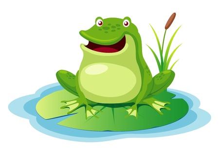 rana caricatura: ilustración de la rana verde en un estanque hoja Vectores