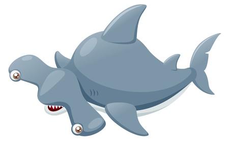 hammer head: illustration of Hammerhead shark
