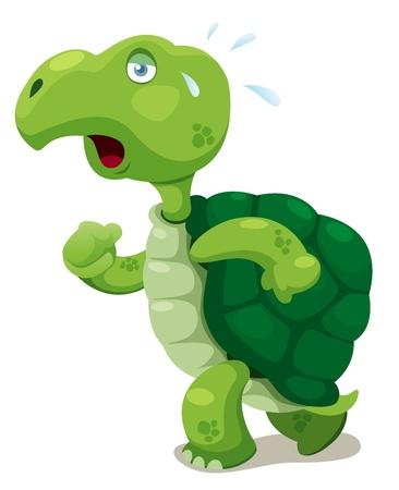 green turtle: illustrazione di vettore tartaruga camminare