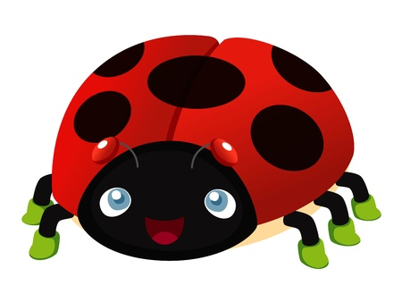 lady bird: illustration of Ladybug cartoon Illustration