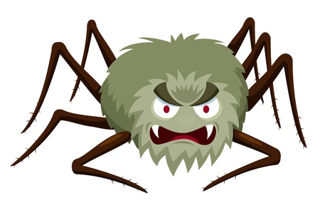 spider net: illustration of Cartoon Spider on white
