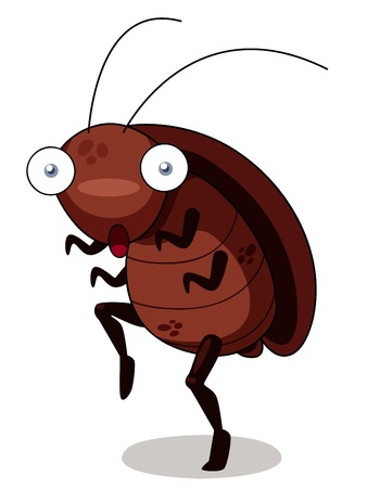 illustration of cockroach cartoon Vector