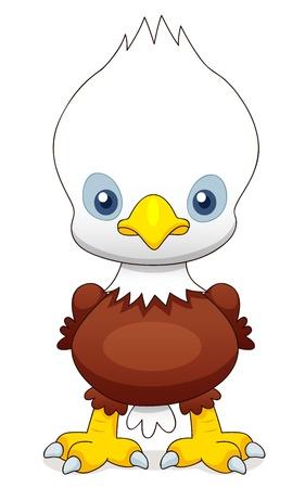 bald head: illustration of Cartoon eagle Illustration