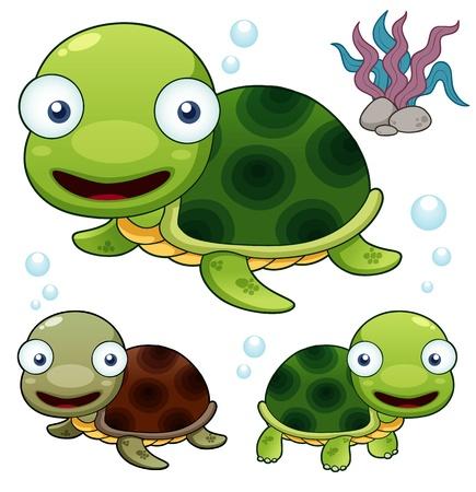 tortoise: illustration of Cartoon turtle