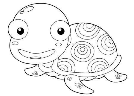 sea weed: illustration of Cartoon turtle outline