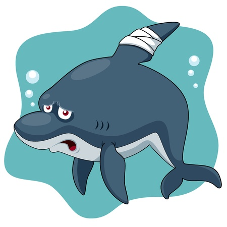 Illustration of Cartoon Shark be injured Vector