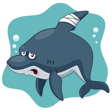 Illustration of Cartoon Shark be injured Stock Vector - 16499609