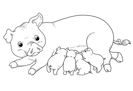 Coloring book - illustration of Pig and baby pig Vector