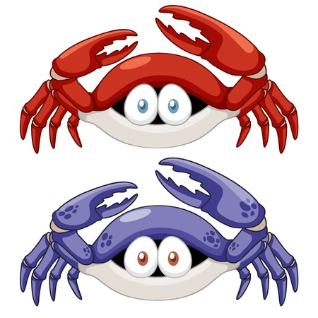 wild life: illustration of Cartoon crab vector