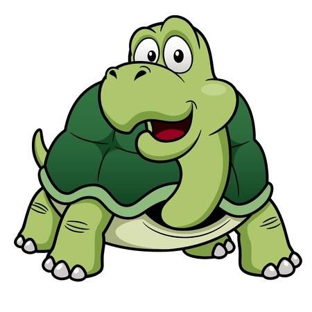 tortuga de caricatura: ilustraci�n de dibujos animados tortuga