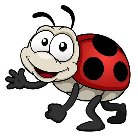 cartoon bug: illustration of cartoon Lady bug