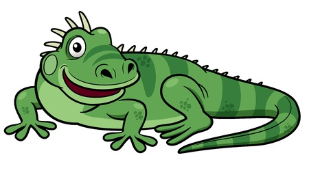 lucertola: Illustrazioni di Cartoon iguana verde